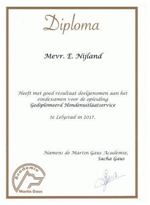 Diploma Martin Gaus HUZ